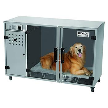 msa-cachorro-inox
