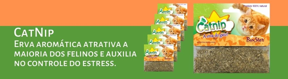 CatNip-Erva-aromática-banner-2