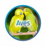 banner-aves