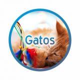 banner_brinquedo_gatos-redondo