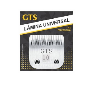 gts 10