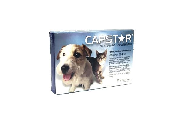 CAPSTAR 11,4 CAIXINHA
